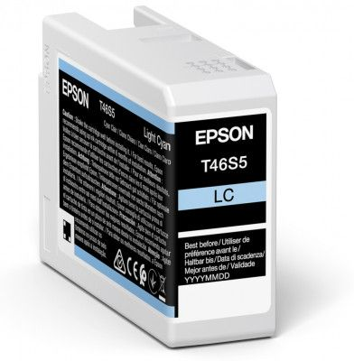 Original Epson T46S5 Light Cyan Inkjet Cartridge C13T46S500
